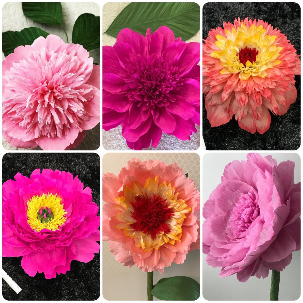 Workshop for Giant Paper Flowers