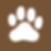 TBRTKiosk_Icons_DogPark.png
