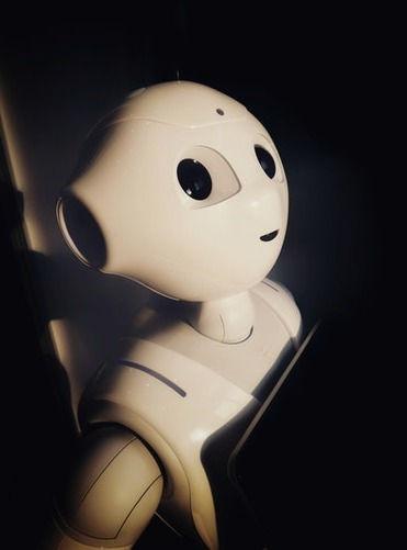 photo-franckinjapan-robot2_edited.jpg