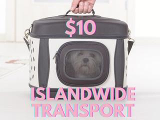 $10 Islandwide Pet Transport