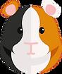 kisspng-guinea-pig-care-hamster-rodent-5