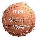 International merit seal copy.png