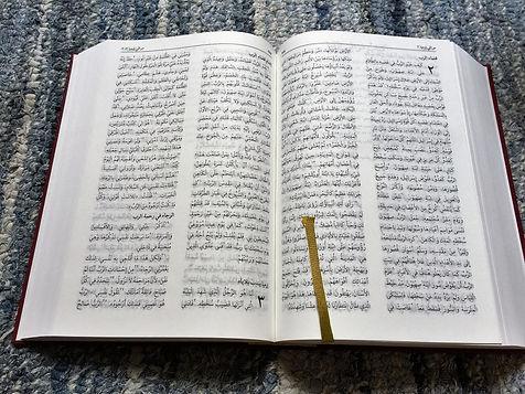 bible-2.jp2