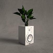 speakerplant.jpg