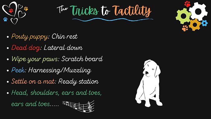 Copy of The Tricks to Tactility.png