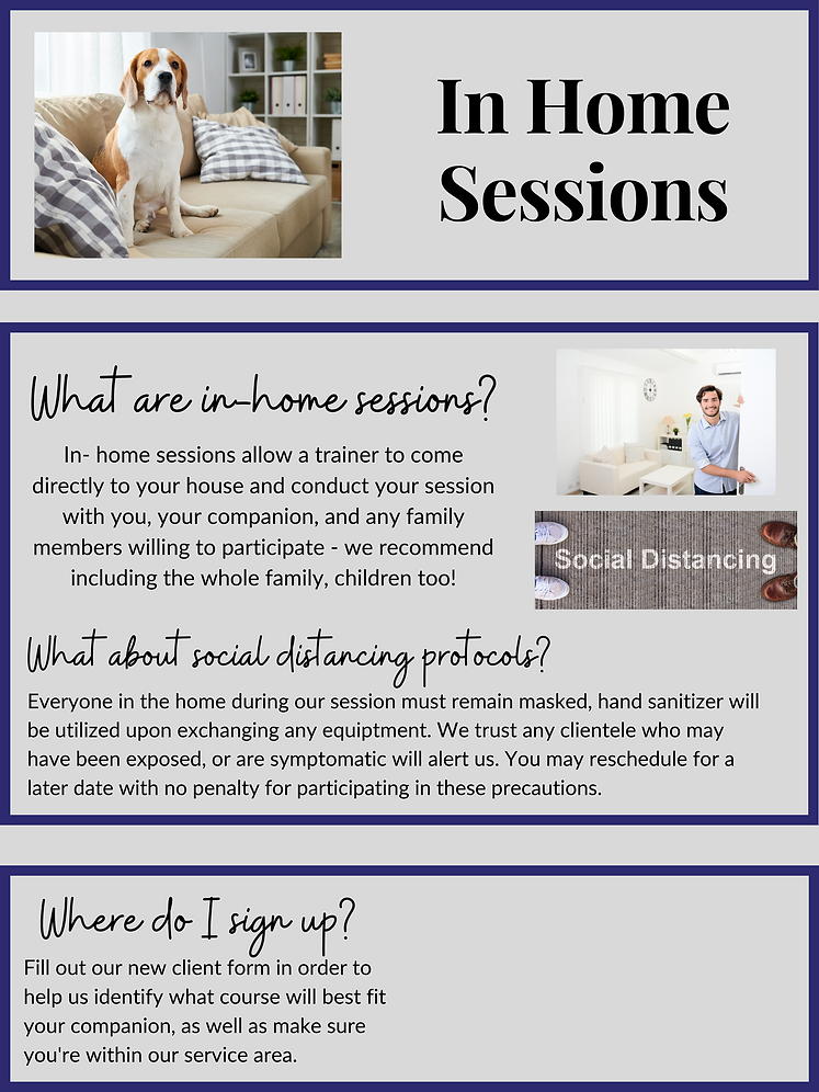 New In-Home Sessions - Website 3.png
