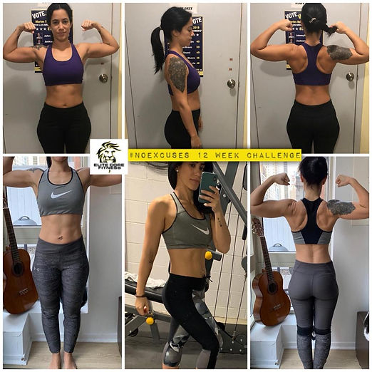 Crossfit Elite core fitness nutrition an