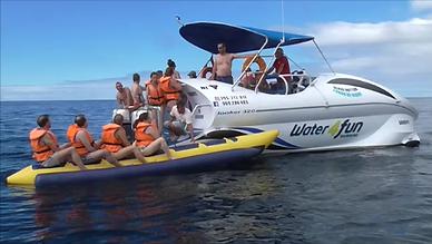 #boattours #bookings #azoresnaturetours #azores #terceiraisland