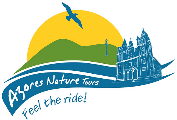 azores nature tours terceira island ebike walking trails van tours bookings