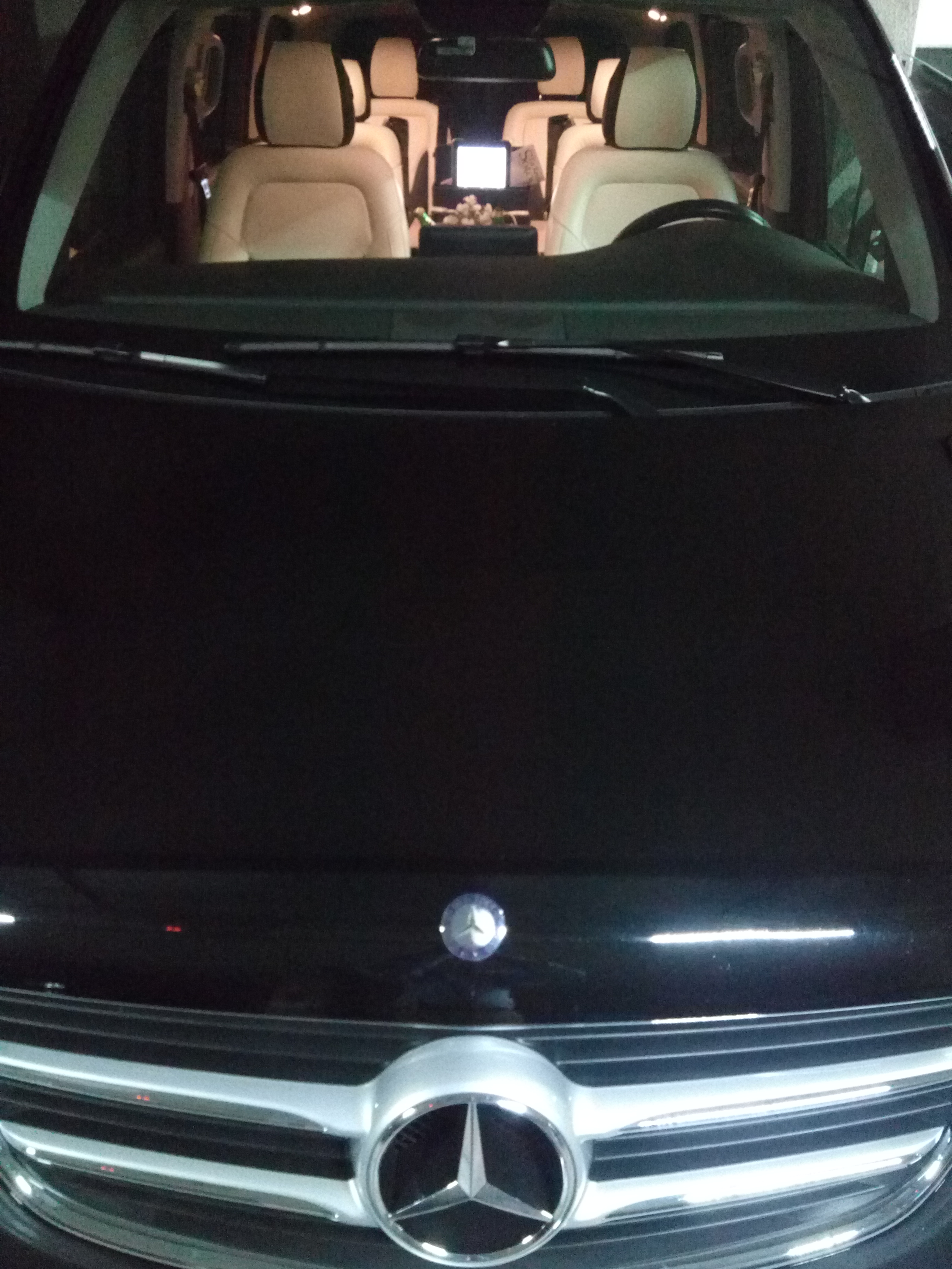 Minivan Executive V 2017 Personalizada (2)