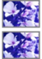Screen Shot 2020-02-07 at 10.26.00.png