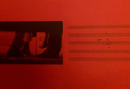 Photographic Notations Red.jpg