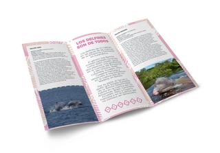 Diseño folleto 01