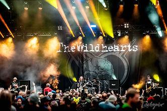 wildhearts.jpg