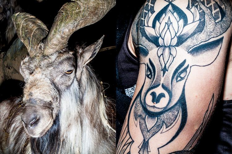 6 Tatuaggio_Montone.jpg