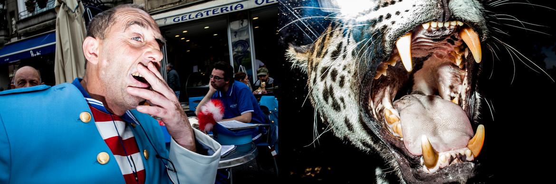 11 Sbadiglio_Tigre.jpg