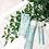 Thumbnail: ageLOC Nutriol Scalp & Hair System