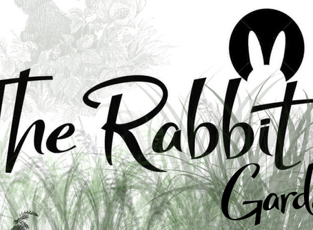 The Rabbits thoughts