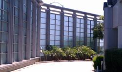 Hotel Angelino Glass Wall