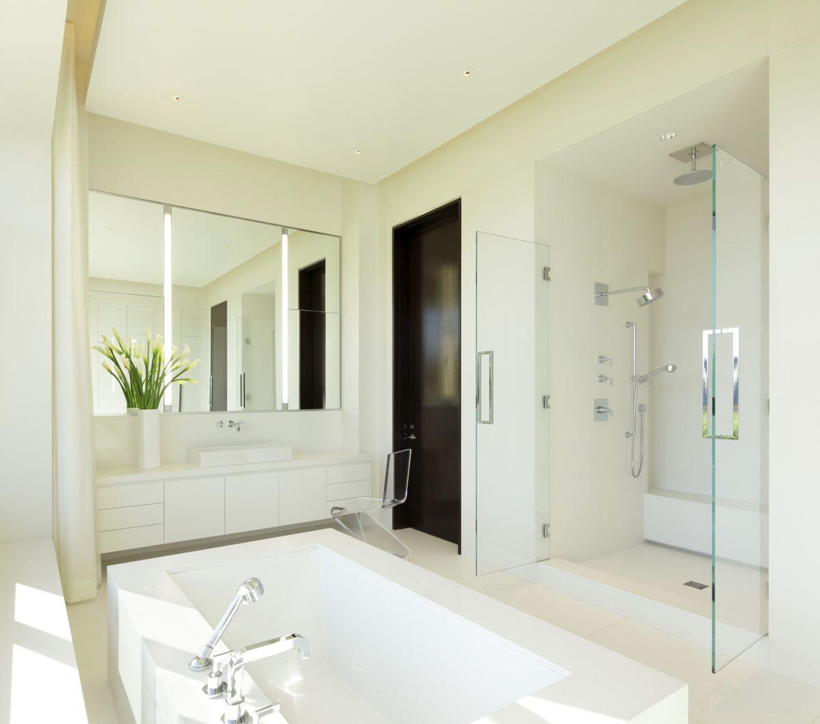 ApolloGlazing_Lot42_Shower&Mirror.png