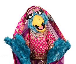 Auntie Pashmina