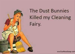 Don't Let The Dust Bunnies Win