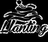 Llanting.png
