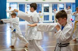 Martial arts class in progress