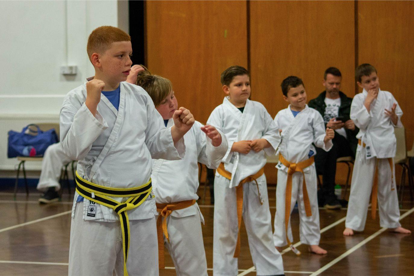 Juniors martial arts grading