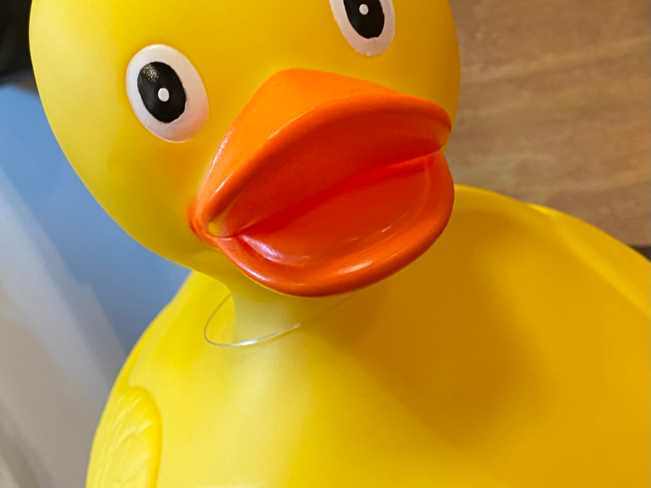 Big Rubber Duckie