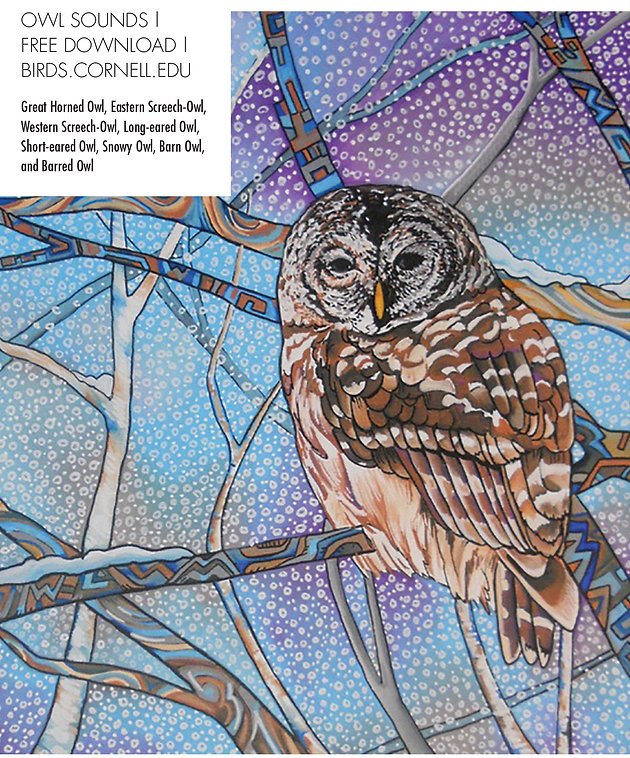 Owl Sounds | Red Hot Magazine