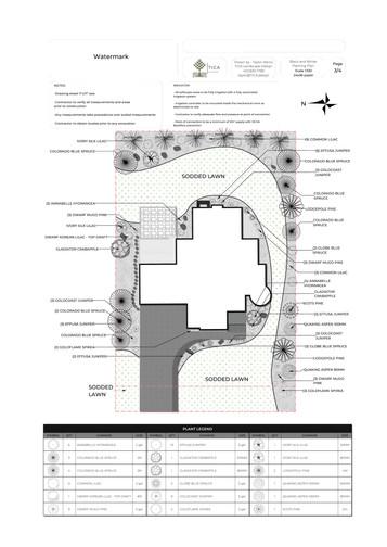TICA Design Landscape plan 0619 2a.jpg