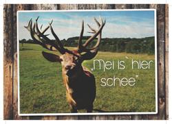 Heimat-Postkarte Vorderseite