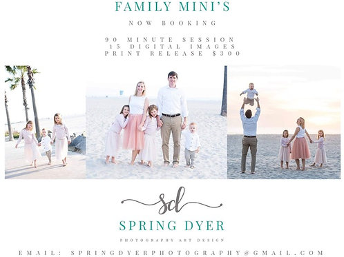 Family Minis Photoshoot with Spring Dyer