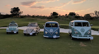 VW Pic - cropped.jpg