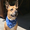 Thumbnail: iWire Dog Bandana