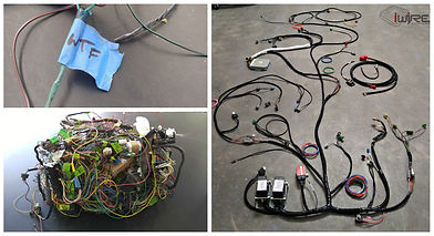 Factory Five 818 Wiring Harness