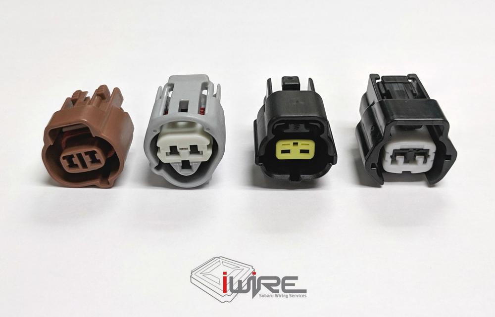 Plug Spotlight