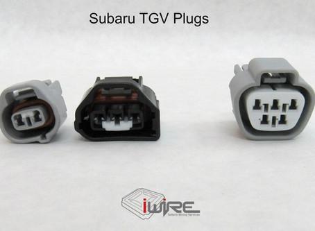 Plug Spotlight - TGV Plugs