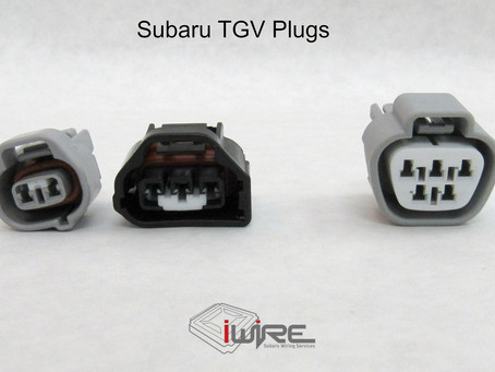 Plug Spotlight - TGV Plugs