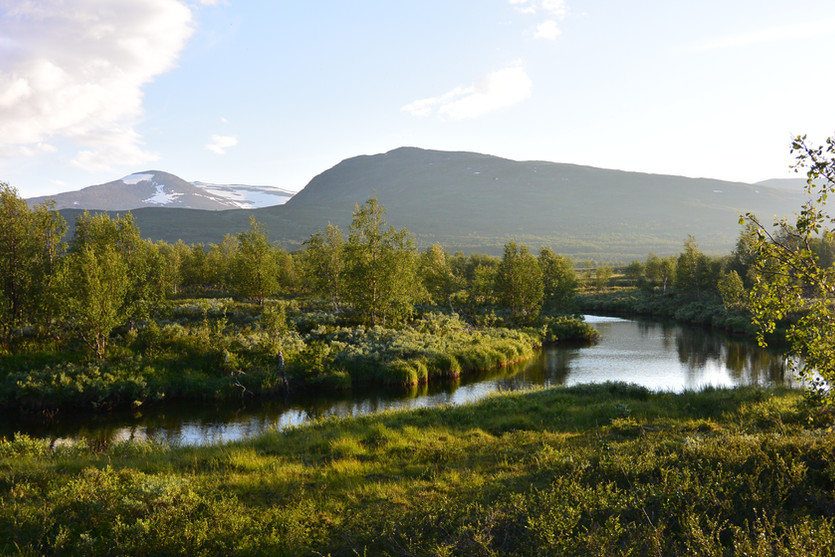 Laivajukke Dry-Fly Land