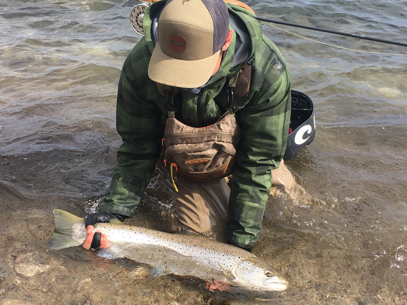 The terrible day that turned into 75 cm Sea Trout on fly