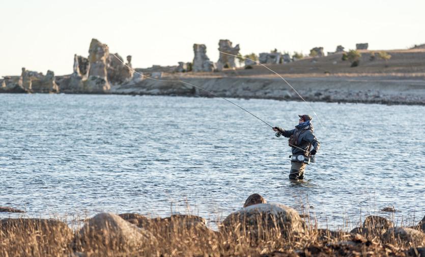 Catch the spirit of autumn coastal fishing