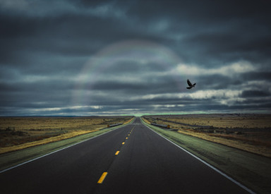dark highway w rainbow n bird_edited.jpg