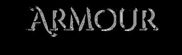 armour personal investigators logo.png