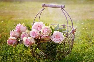roses-1566792_1920.jpg