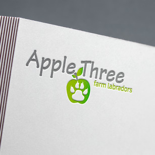 Apple Three