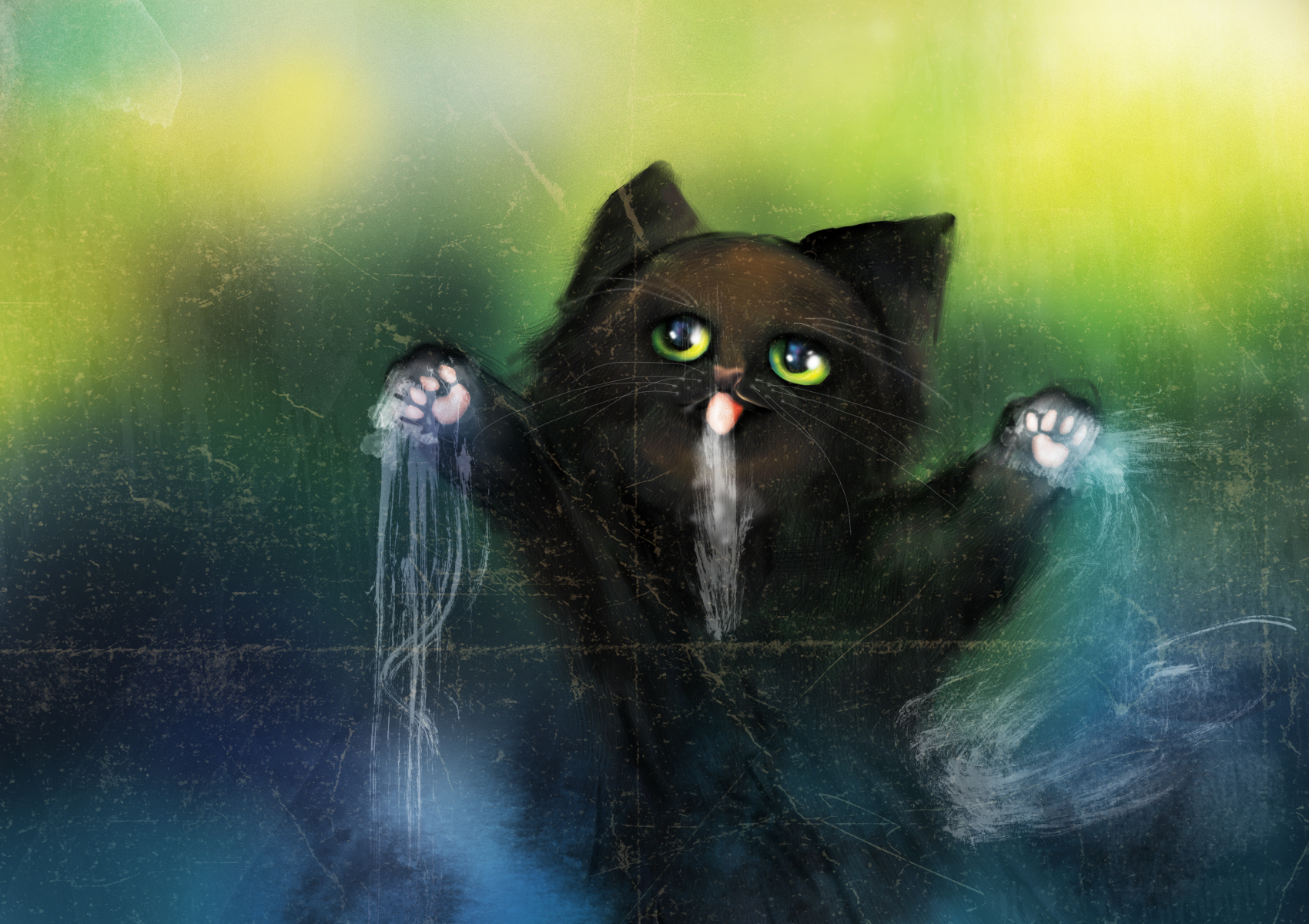 Katze auf Glas