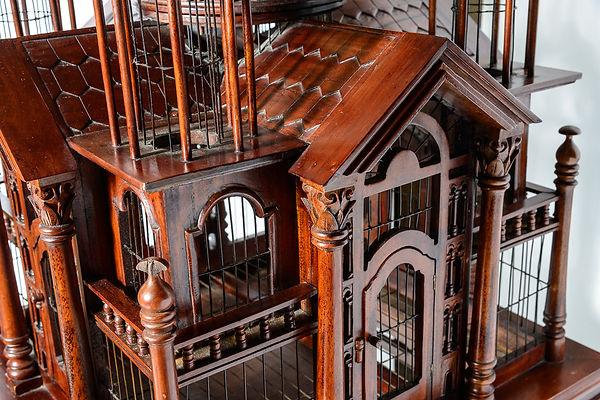 Oriental bird cage9S.jpg