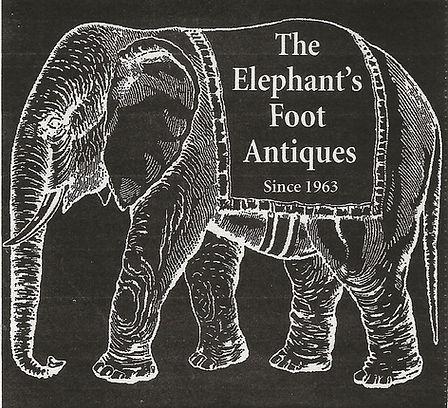 Elephants Foot Elephant.jpg